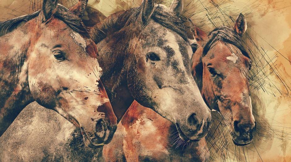Traumdeutung pferd: Was bedeutet das?