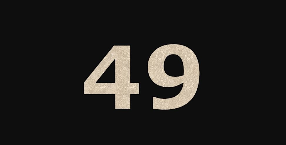 Zahl 49