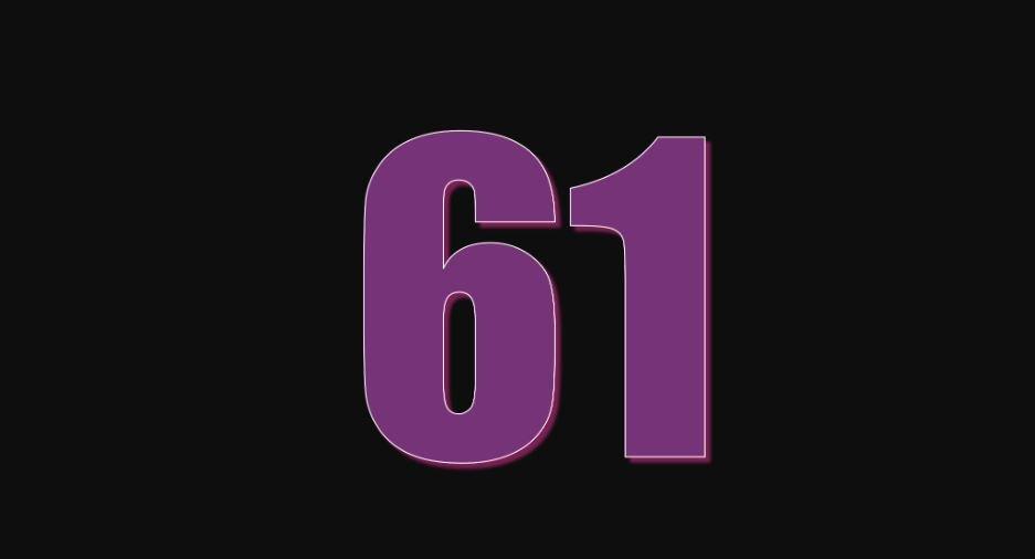Zahl 61