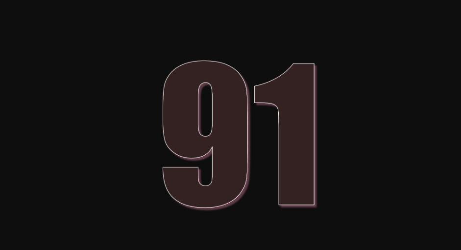 Zahl 91