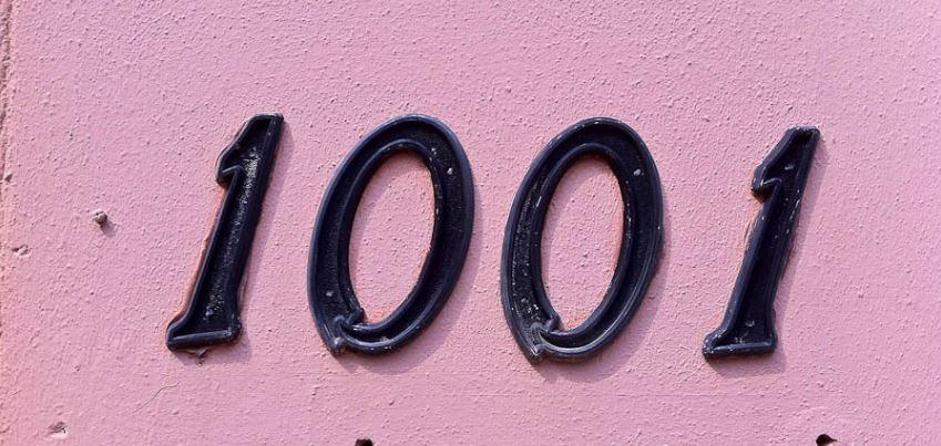 Zahl 1001