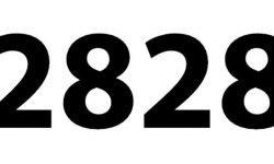 Die Bedeutung der Zahl 2828: Numerologie und Zahlenmystik