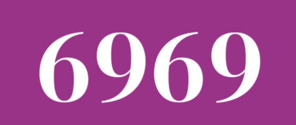 Zahl 6969