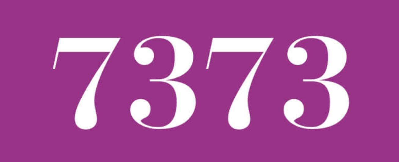 Zahl 7373