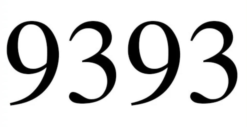 Zahl 9393
