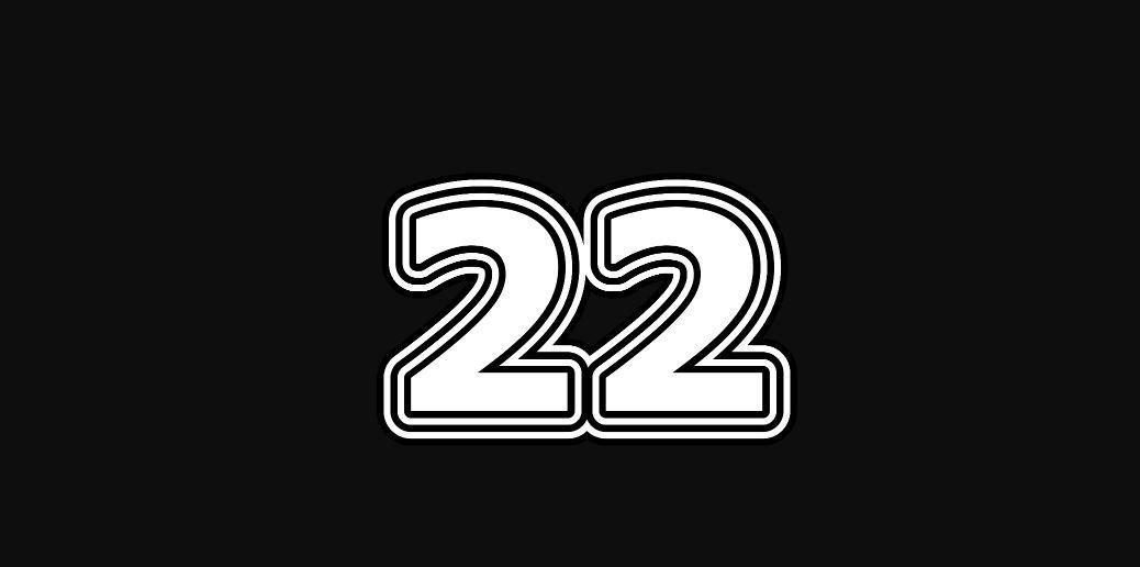 Meisterzahl 22