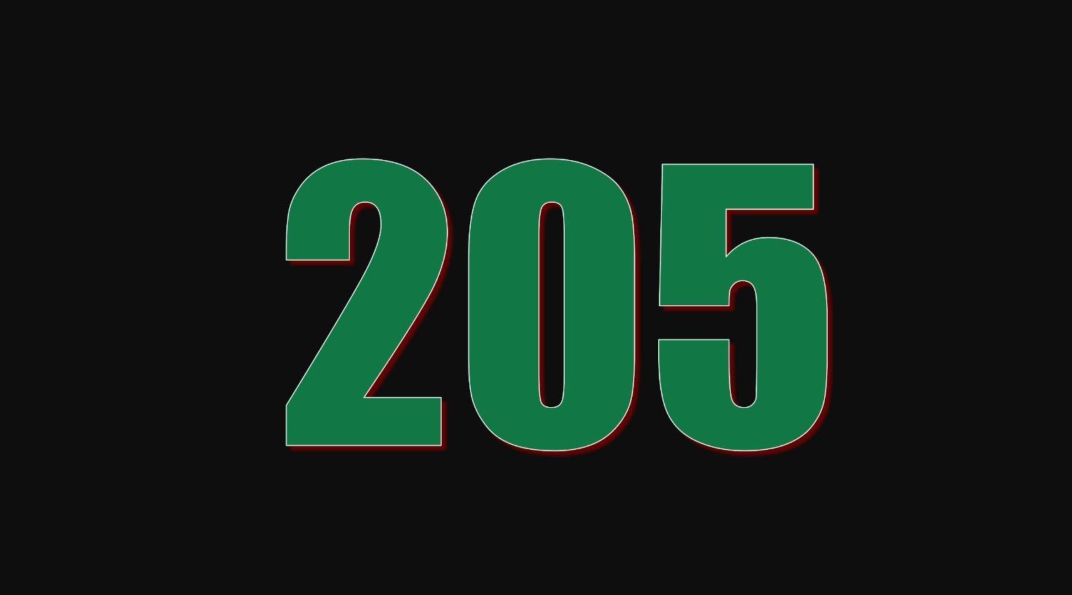 Die Bedeutung der Zahl 205