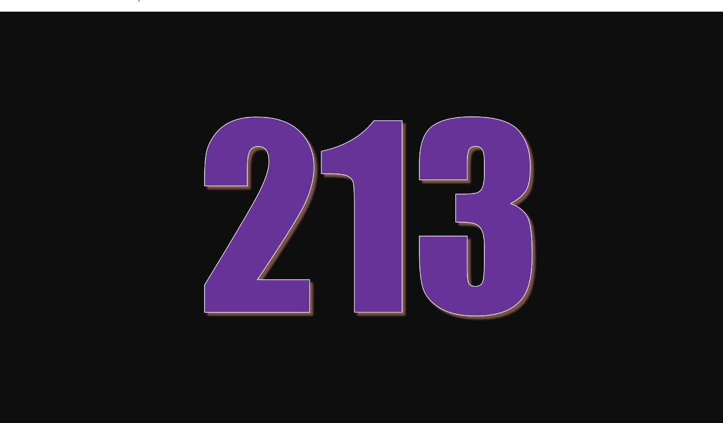 Die Bedeutung der Zahl 213