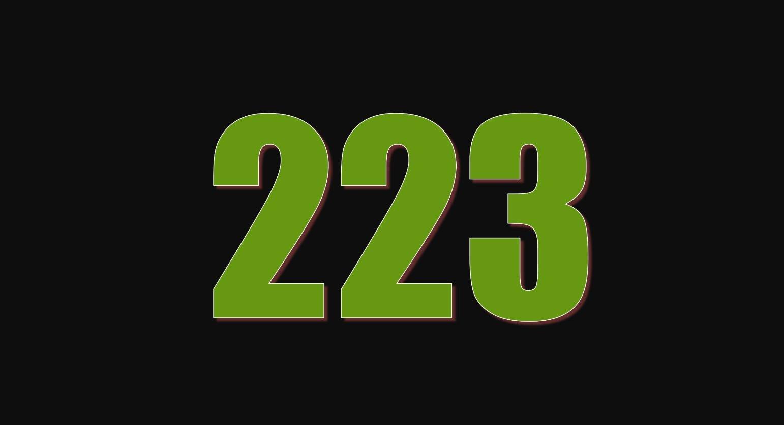Die Bedeutung der Zahl 223