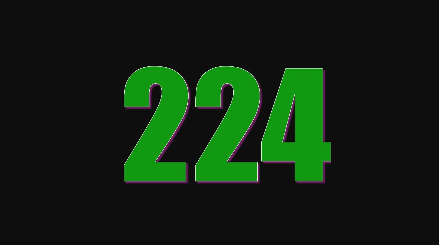 Die Bedeutung der Zahl 224