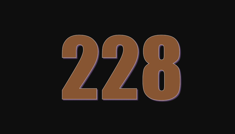 Die Bedeutung der Zahl 228