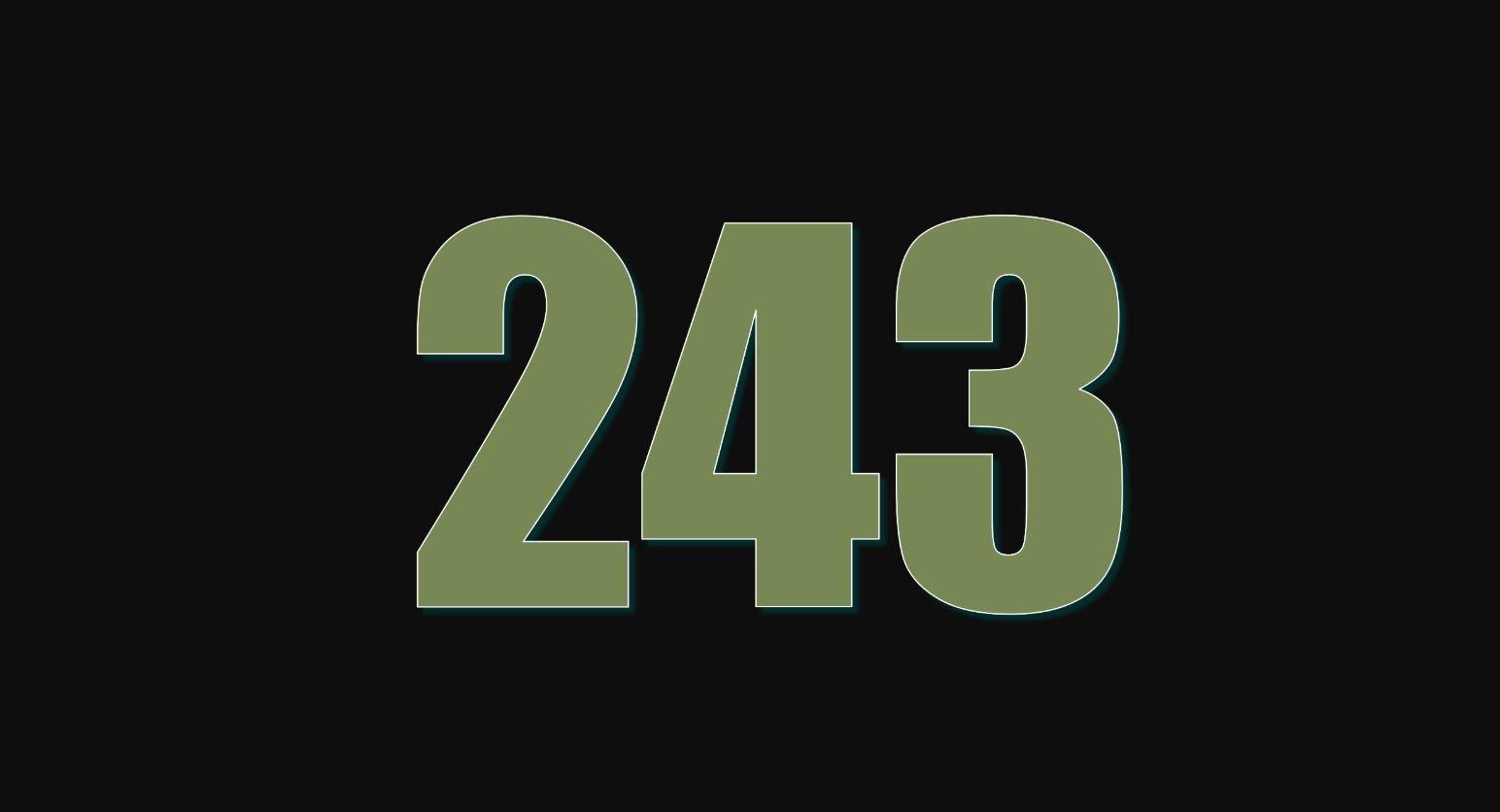 Die Bedeutung der Zahl 243