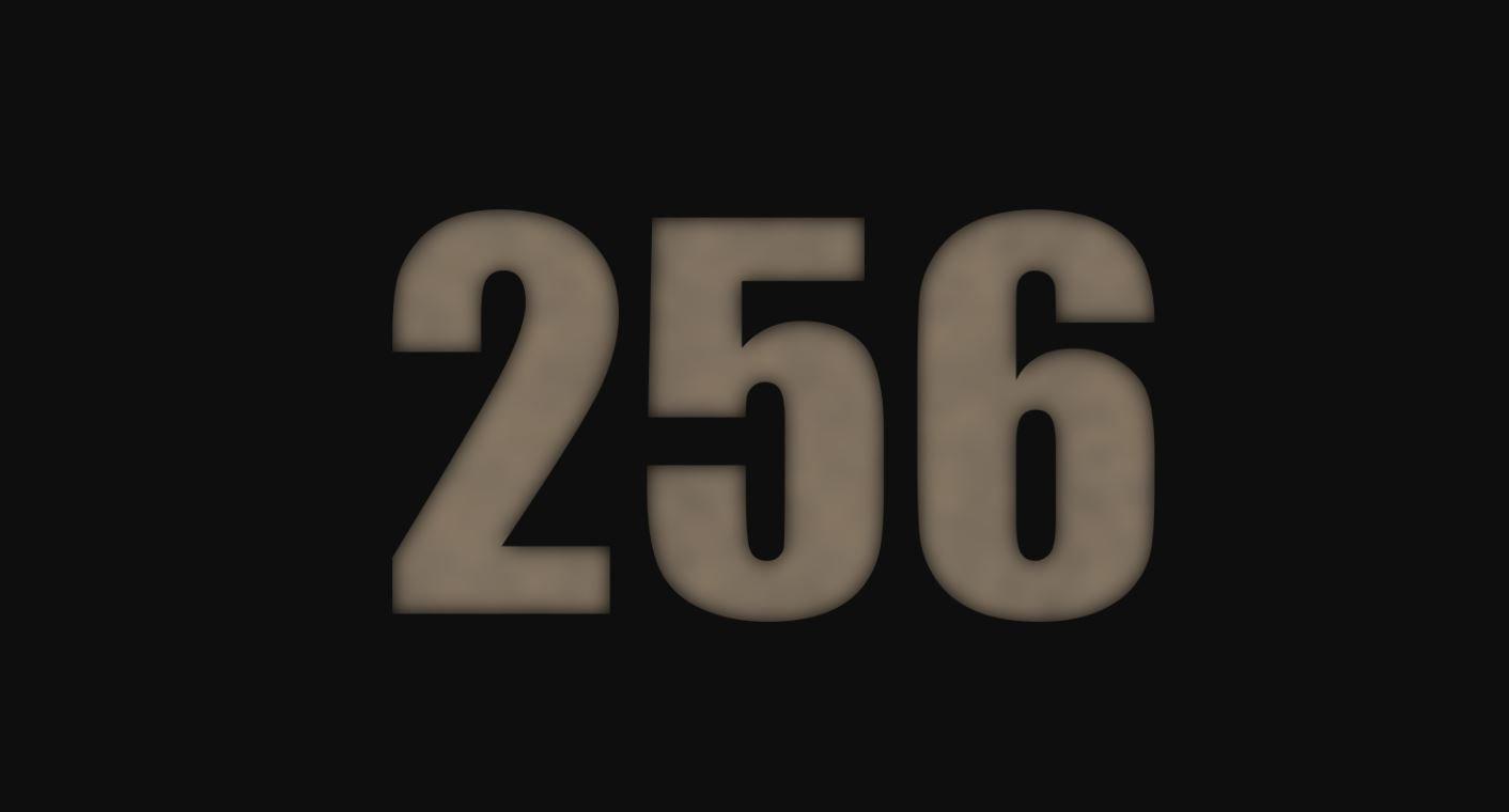 Die Bedeutung der Zahl 256