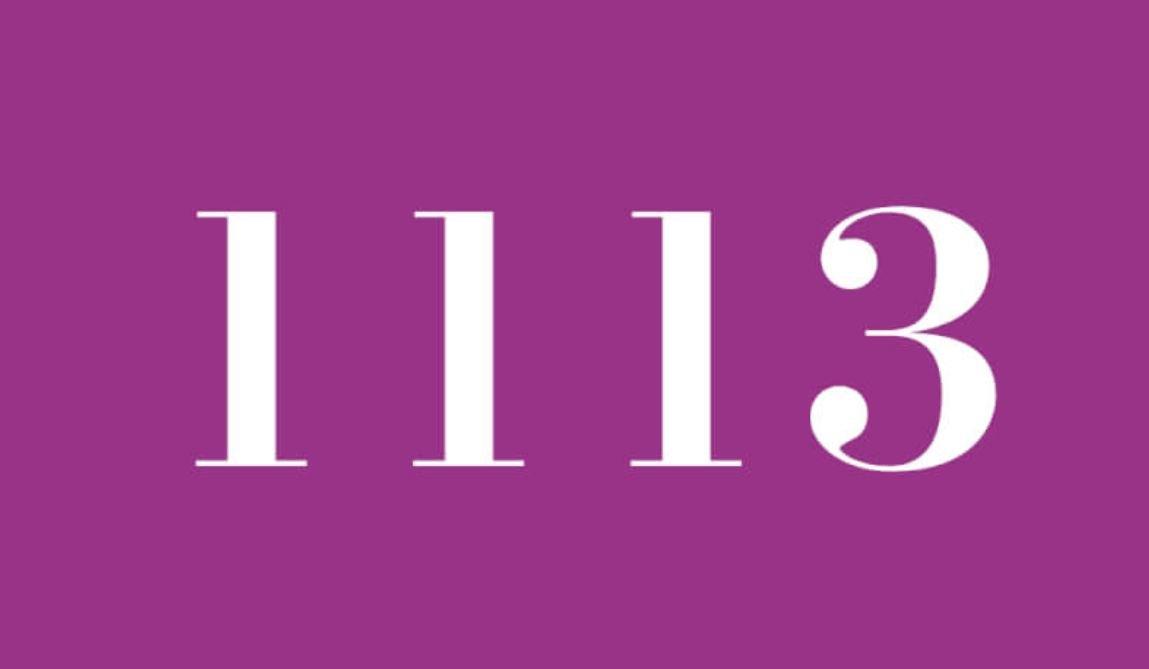 Die Bedeutung der Zahl 1113