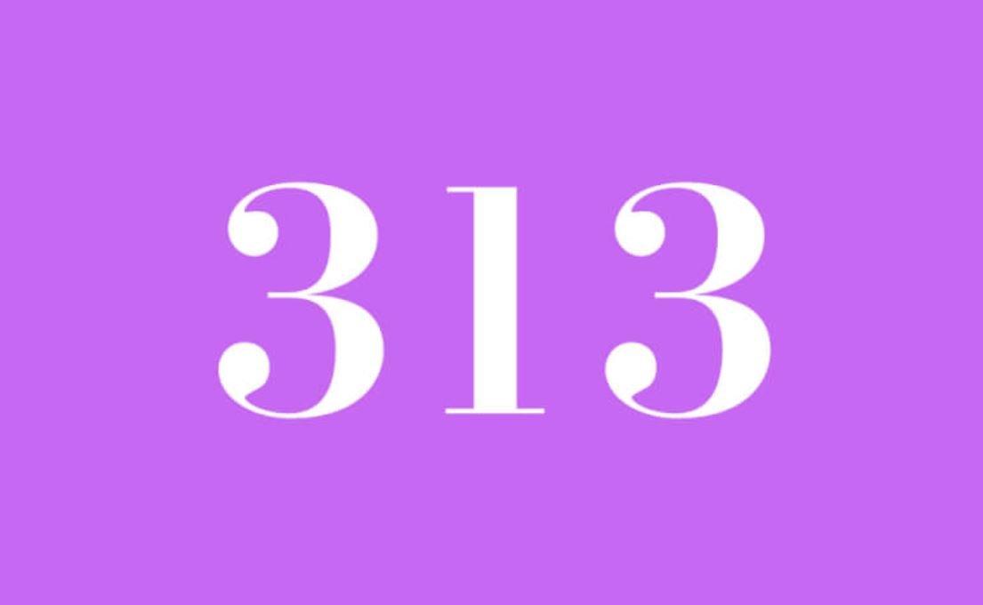 Die Bedeutung der Zahl 313