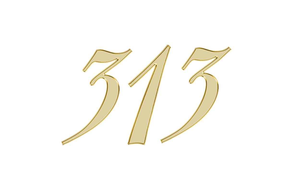 Engelszahl 313