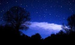 Horoskop: 8 januar sternzeichen