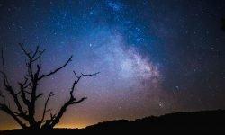 Horoskop: 24 Februar sternzeichen