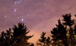 Horoskop: 8 März sternzeichen