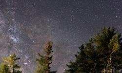Horoskop: 20 März sternzeichen