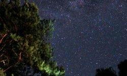 Horoskop: 21 März sternzeichen