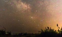 Horoskop: 29 März sternzeichen