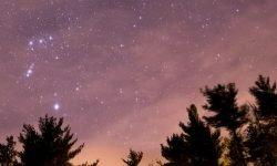 Horoskop: 2 April sternzeichen