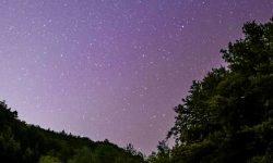 Horoskop: 22 April sternzeichen