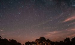 Horoskop: 26 April sternzeichen