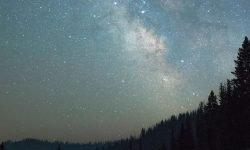 Horoskop: 11 Mai Sternzeichen