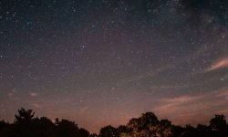 Horoskop: 12 Mai Sternzeichen