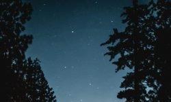 Horoskop: 16 Mai Sternzeichen