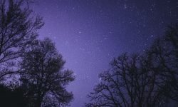 Horoskop: 20 Mai Sternzeichen