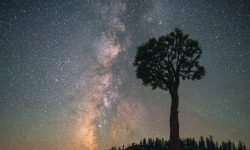 Horoskop: 29 Mai Sternzeichen
