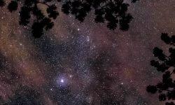 Horoskop: 12 Juni Sternzeichen
