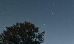 Horoskop: 1 Juli Sternzeichen