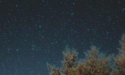Horoskop: 14 Juli Sternzeichen
