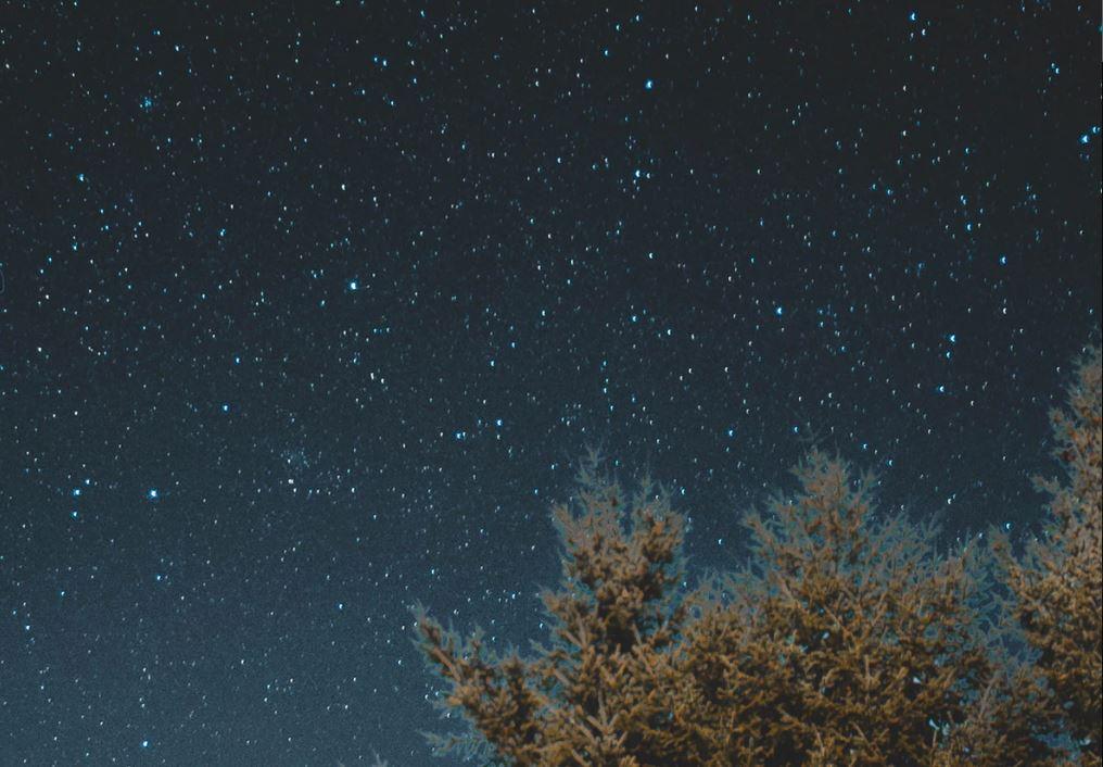 14 Juli Sternzeichen