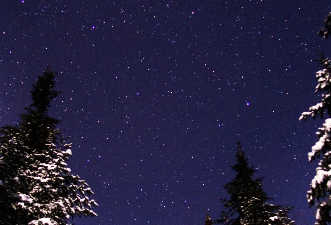 16 Juli Sternzeichen