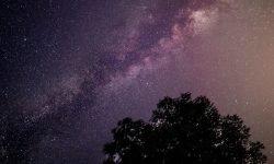 Horoskop: 18 Juli Sternzeichen