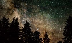 Horoskop: 21 Juli Sternzeichen