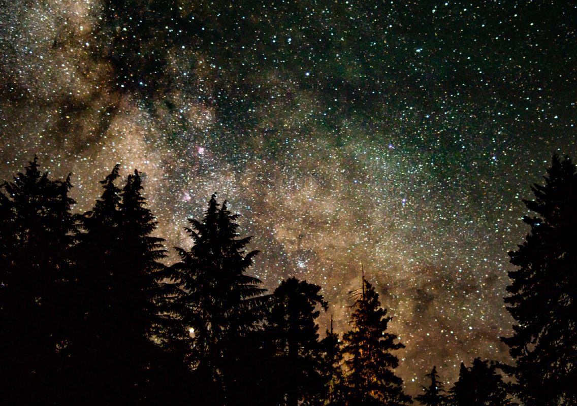 21 Juli Sternzeichen