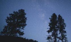 Horoskop: 23 Juli Sternzeichen