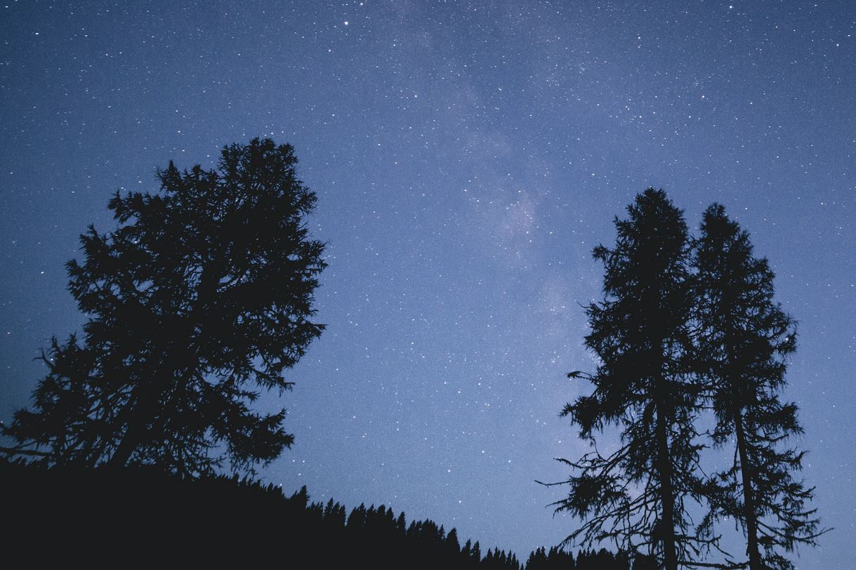 Sternzeichen 23 Juli