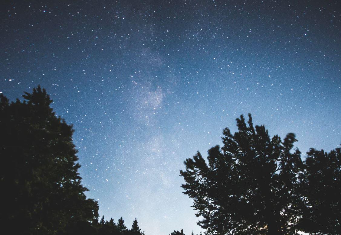 28 Juli Sternzeichen