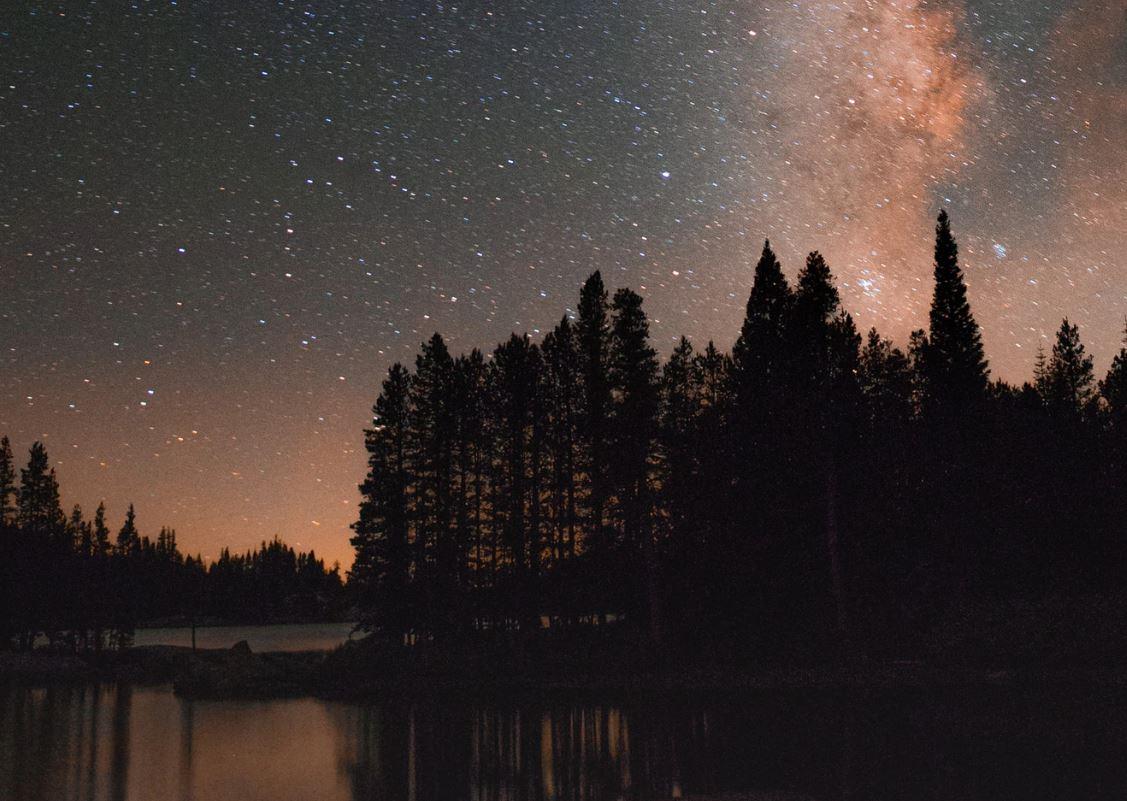 29 Juli Sternzeichen