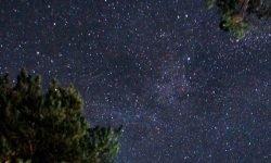Horoskop: 2 August Sternzeichen