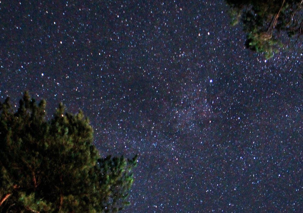 2 August Sternzeichen