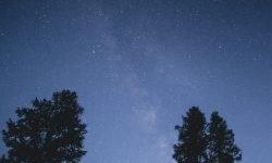Horoskop: 4 August Sternzeichen
