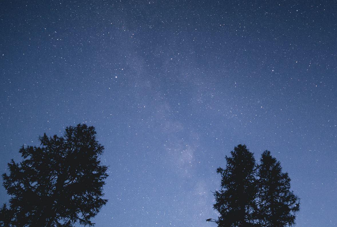 4 August Sternzeichen